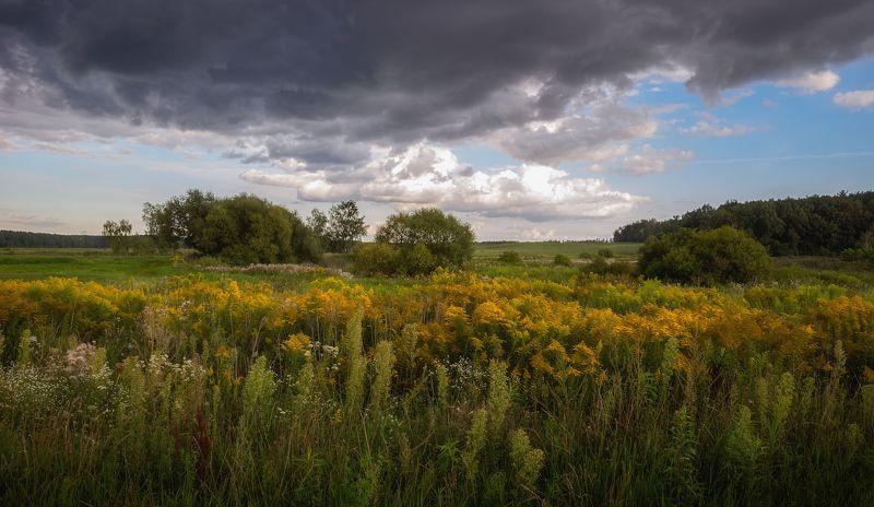 лето, поле, небо, Про августphoto preview