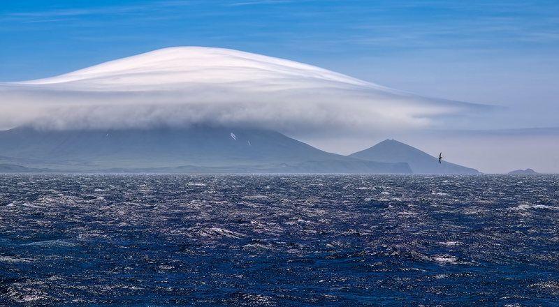берег, вулканы, камчатка, облака, утро, чайка покрывало для вулканаphoto preview