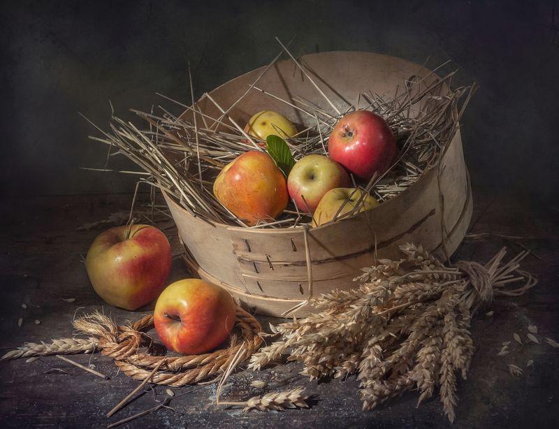 сито,яблоки,злаки,стакан ,одуванчики,фрукты,сарай,солома,колосья Молодильные яблочкиphoto preview