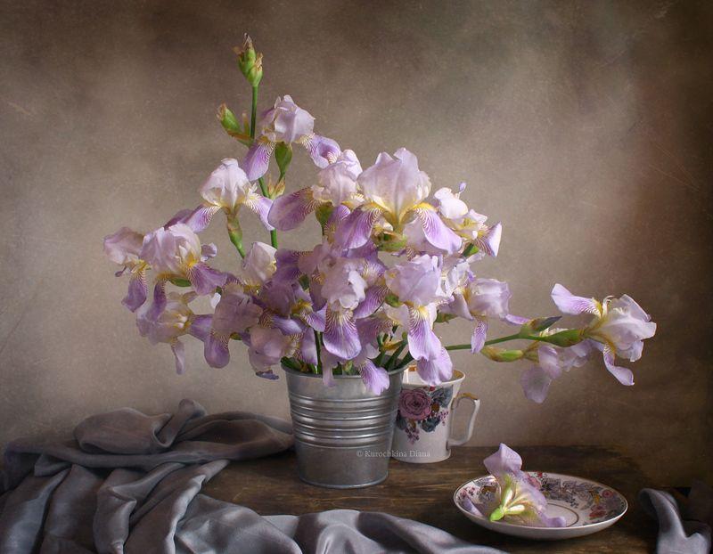 натюрморт, цветы, букет, ирисы, июнь Ирисы цветутphoto preview
