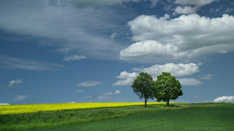 голубые, весенние, горизонты ,zanfoar,moravia,bohemia,nikon d750,czech republic Голубые весенние горизонтыphoto preview