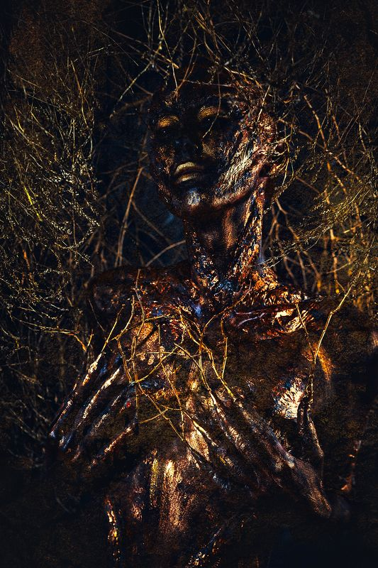 woman, portrait, conceptual, studio, bodyart All the fire ever burnt You, turned You into goldphoto preview