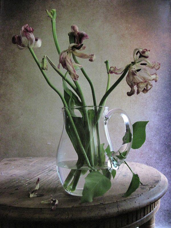 цветы, букет, тюльпаны, кувшин. стекло Уходящая красотаphoto preview