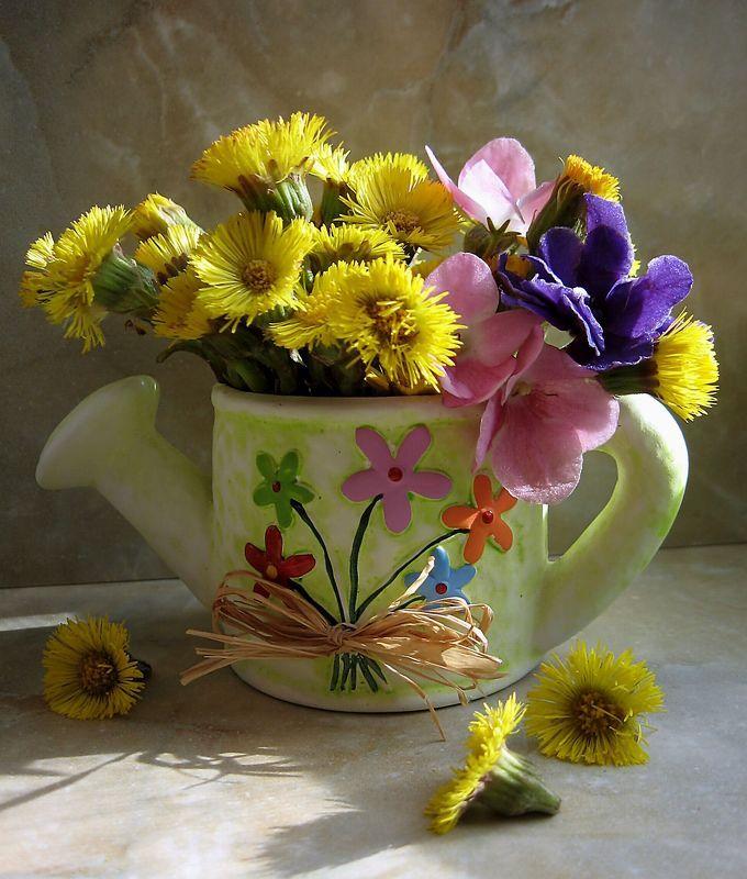 цветы, букет. мать-и-мачеха, фиалки Дикие и домашниеphoto preview