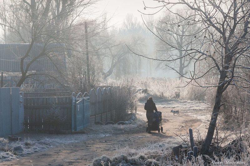 васильков васильків стугна Утренняя прогулкаphoto preview