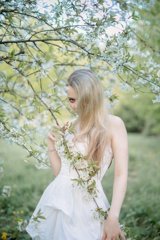 весна, май, нежность, цветы, сад, вдохновение, мелодия, гармония, девушка, портрет, белое платье, украина, коростышев, фотограф житомир, фотограф киев, коростышев, украина, Ритаphoto preview