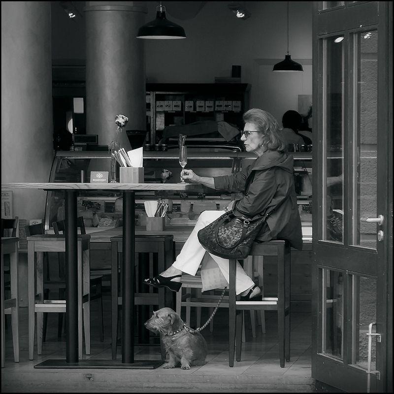 Дама с собачкой фото превью
