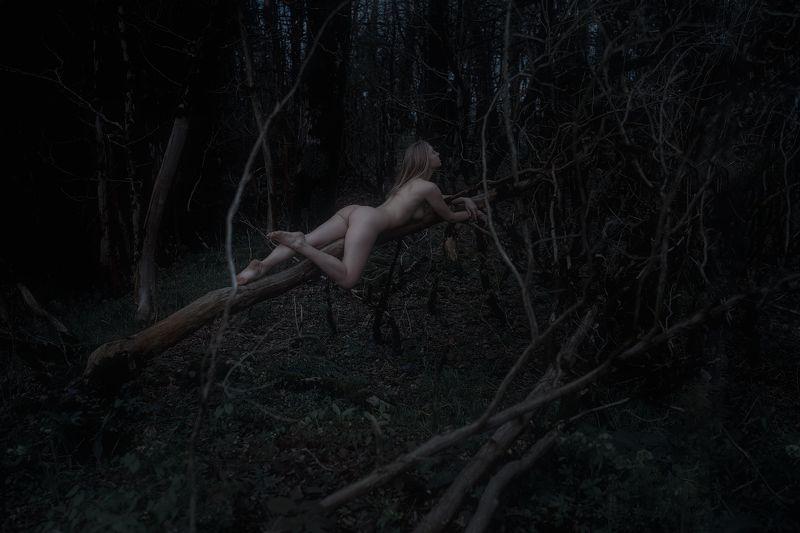 nude art girl DESTRUCTION ... DEAD FOREST ⠀photo preview