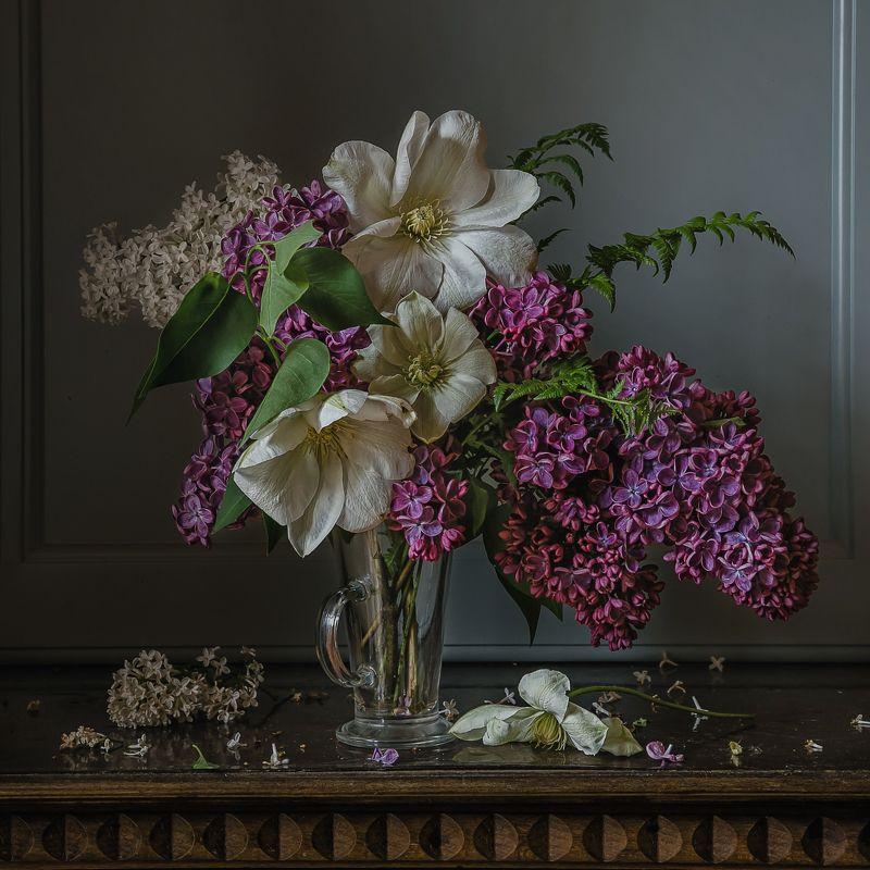 натюрморт, цветы, клематисы, сирень Про клематисыphoto preview