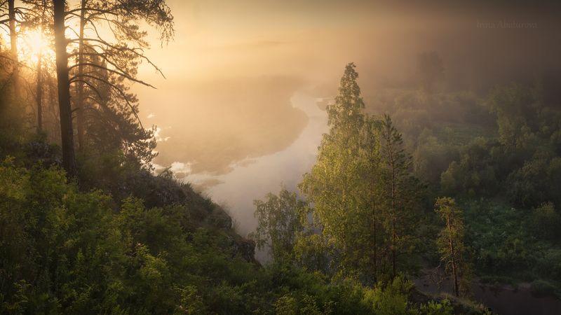 урал, оленьи ручьи, природный парк, рассвет, лето, туман, река Рассвет на реке Сергаphoto preview