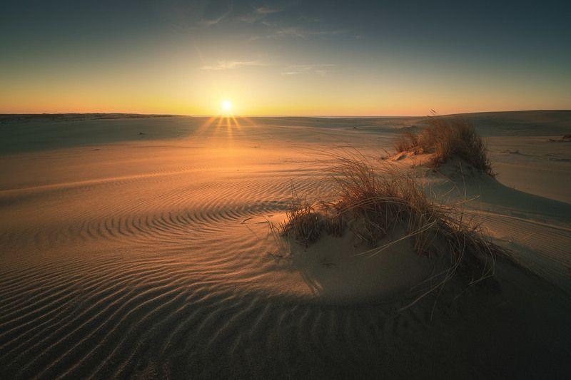 россия, калининградская область, балтика, балтийское море, куршская коса, национальный парк, пейзаж, природа, море, дюны, куршский залив, песок, весна, рассвет, солнце Дюныphoto preview