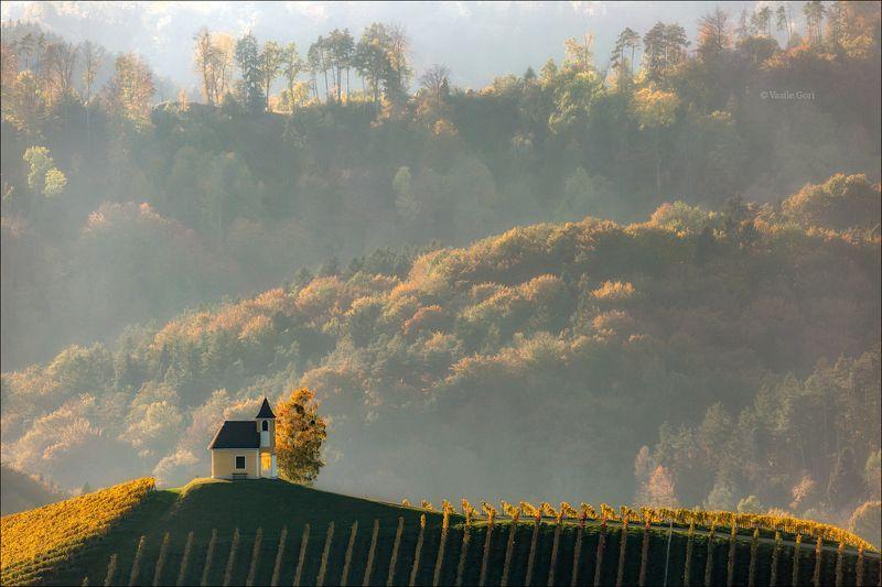 dreisiebner kapelle,свет,часовня,штирия,chapel,гамлитц,австрия,gamlitz- sernau,landscape,панорама,осень Часовенка в закатной дымкеphoto preview