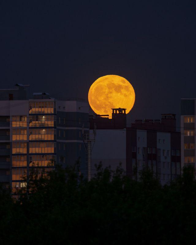 луна  лунвphoto preview