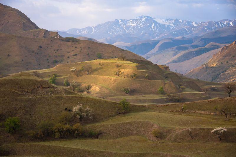 дагестан, кавказ, село чох, рассвет Дагестан, долина у села Чохphoto preview