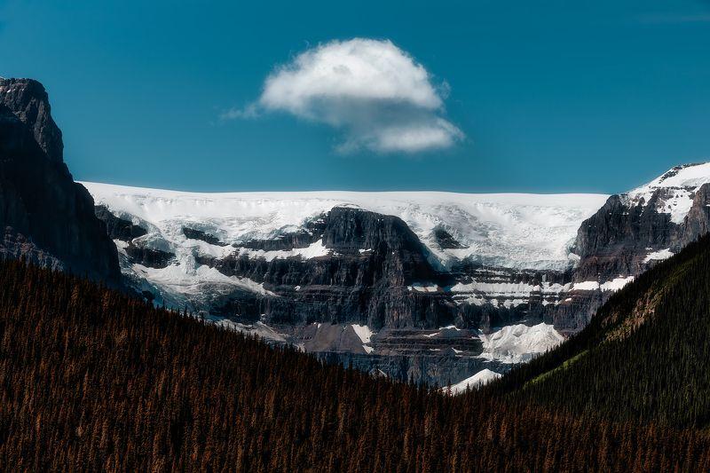 landscape, glacier, history, historical, forest, cloud, snow, summer, outdoor, sky Historical glacierphoto preview