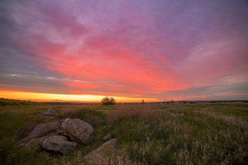 пейзаж, закат, весна, май, степь Somewhere in mayphoto preview