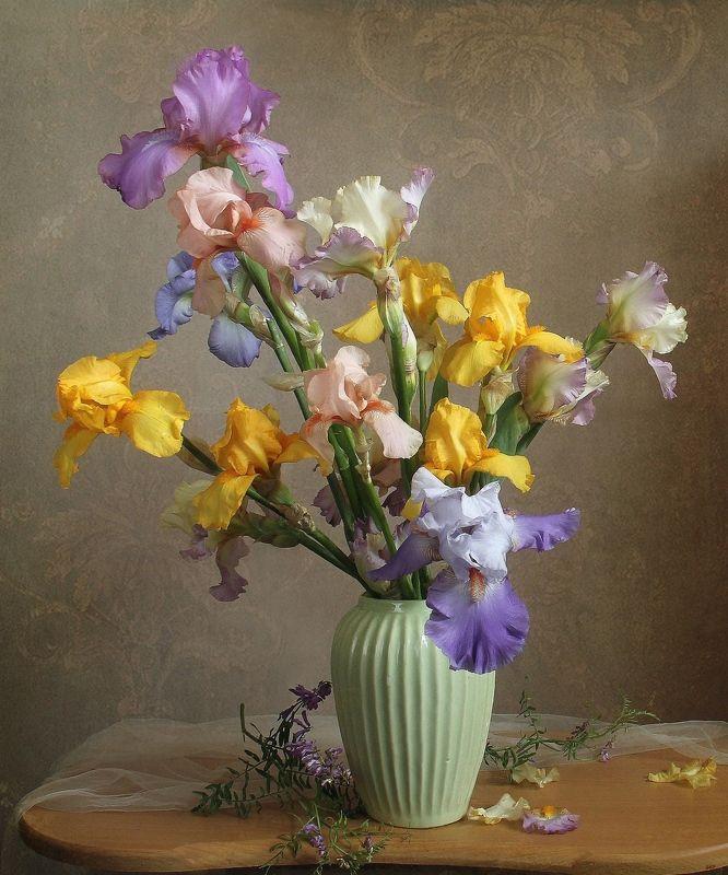 весна, натюрморт, букет цветов,ирисы, марина филатова Люблю цветы, их радужные краски...photo preview