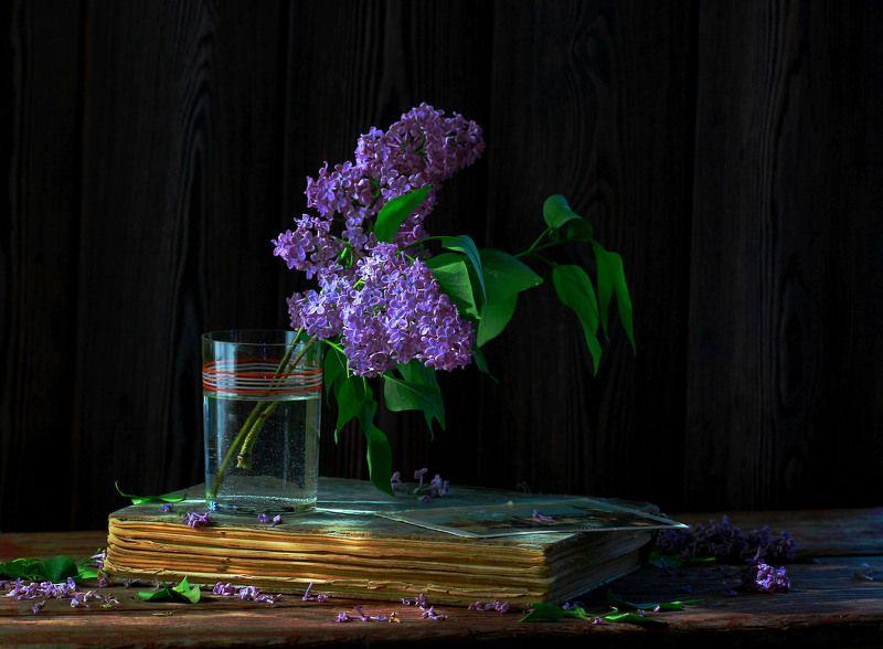 натюрморт, фотонатюрморт, лето, весна, сирень, книга, открытка,  наталья казанцева С веточкой сирениphoto preview