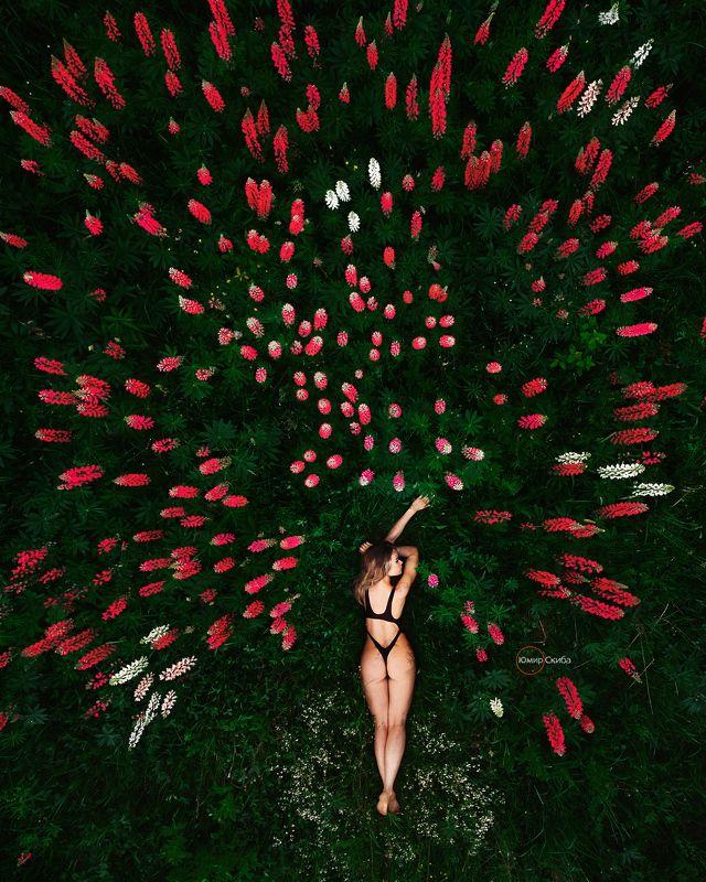 девушка, юмирскиба, гламур, ню, фото, портрет, арт, nu, nude, art, dji. djimimi2 summer colorphoto preview