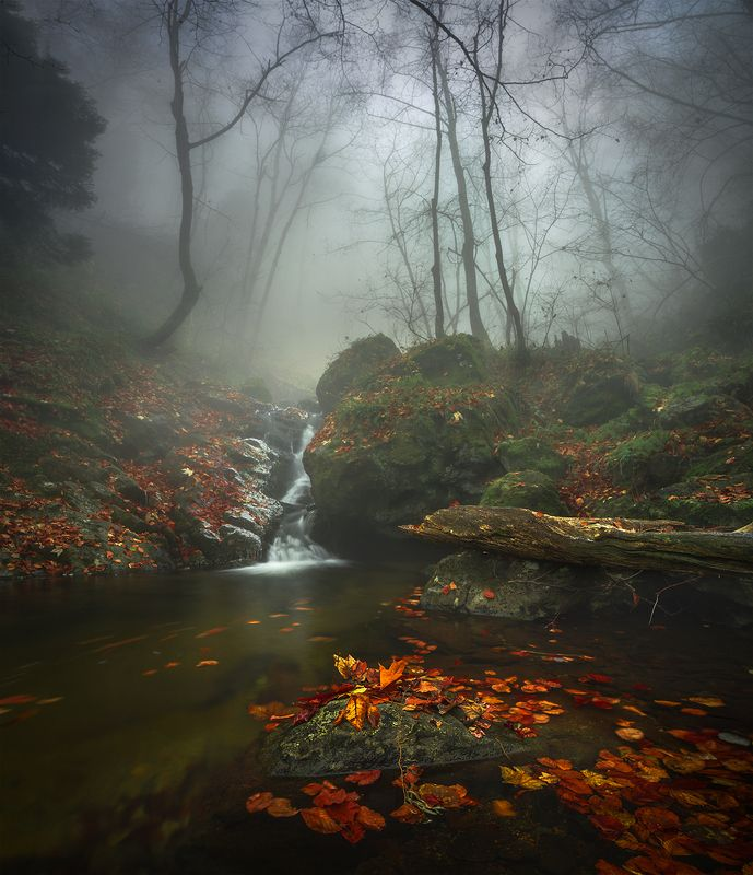 landscape nature scenery forest wood autumn mist misty fog foggy river waterfall colors mountain vitosha bulgaria туман лес Forest lullabyphoto preview
