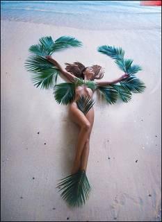 Palm Coast ⭒