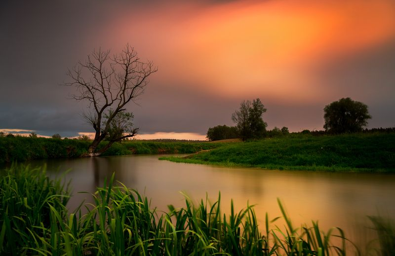 sunset, river, tree, nature, landscape, spring, sun, day Pomorskiephoto preview