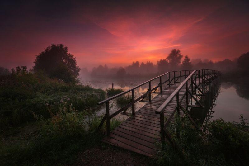 озеро, горы, лес, природа, закат, рассвет, красота, приключения, путешествие, облака Мост в рассветphoto preview