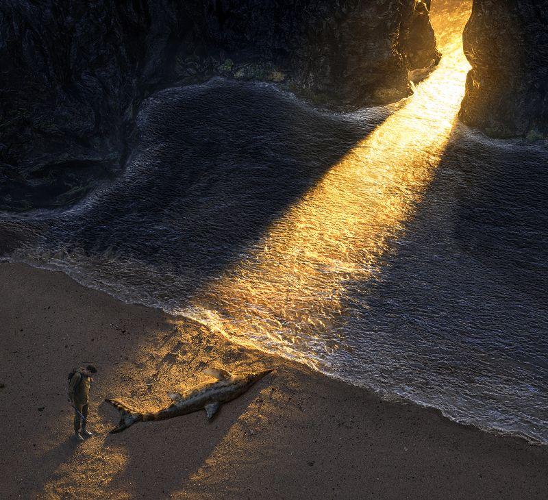 parishkov, постановочная, фотография, ихтиозавр, закат, залив, природа, атмосфера, парышков, диорама,    фото превью