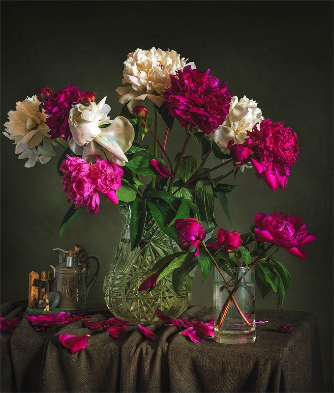 still life, натюрморт,    винтаж,    цветы,  пионы, букет, натюрморт с пионамиphoto preview