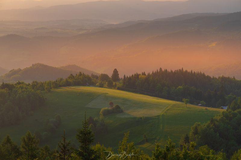 fog,mist,haze,trees,forest,morning,tree,sunrise,atmosphere,dawn,light Sunrisephoto preview
