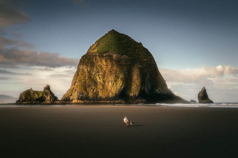 Cannon Beach My model for today :))) фото превью