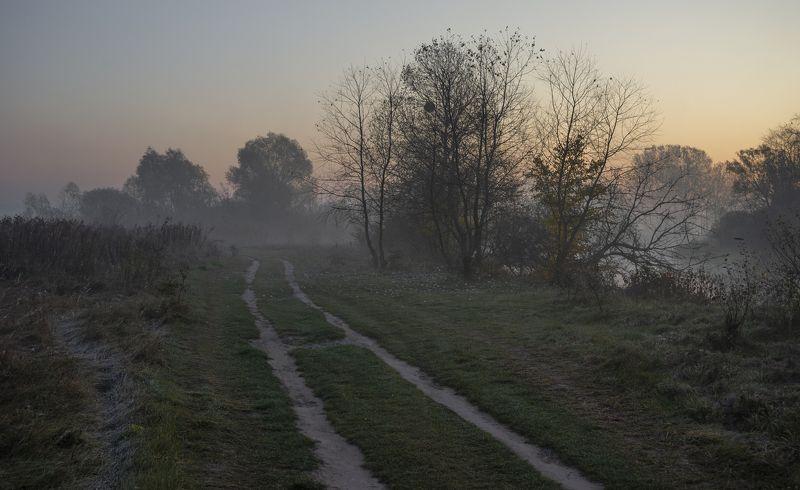 у Горинь реки.октябрь. фото превью