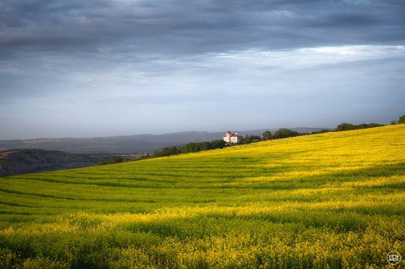 крым, балаклава, поле Рапсовое поле в Балаклаве фото превью