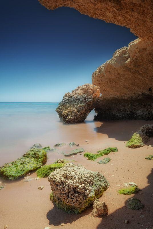 красное море, пейзаж, отлив, море, путешествие, travel, landscape, seascape, africa Красное мореphoto preview