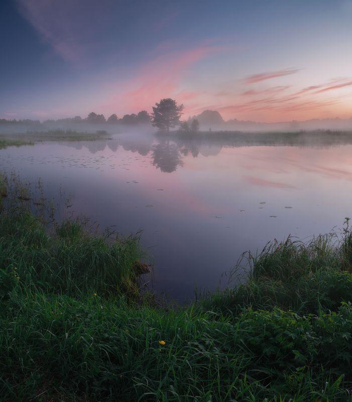 пейзаж,туман,россия,север,архангельская область,туман,отражение,озеро photo preview