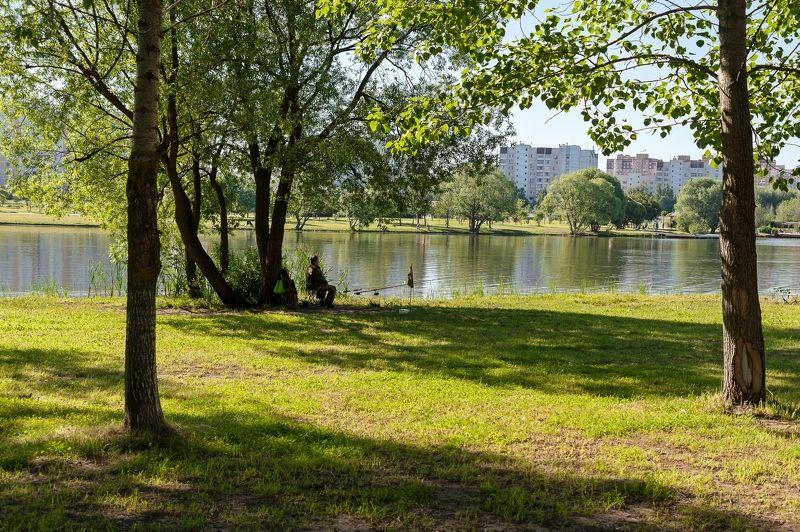 Рано утром в парке фото превью