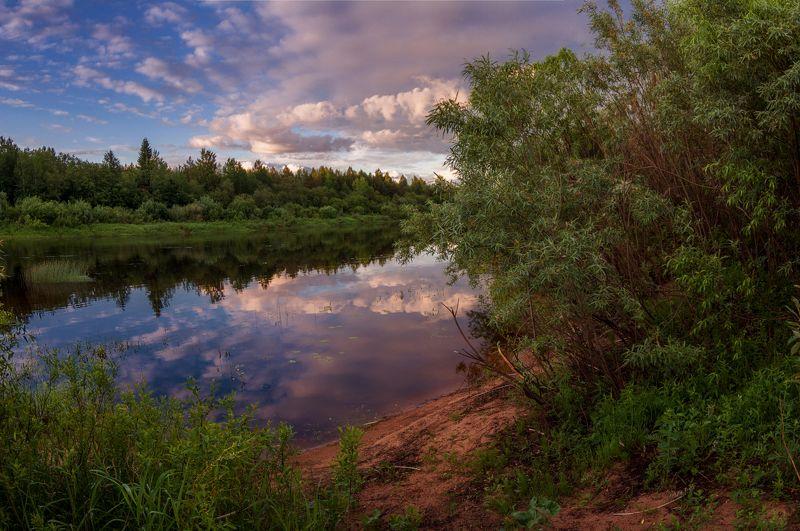 лето , река, цветы, облака, закат, молога про летний вечер и тишину на реке фото превью