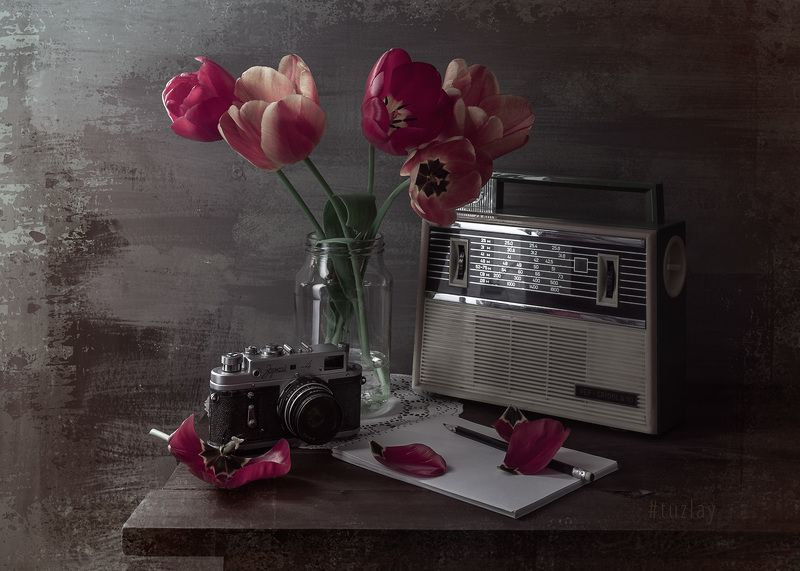тюльпаны, спидола, зоркий, ретро Еще про апрельский ретро стайлphoto preview