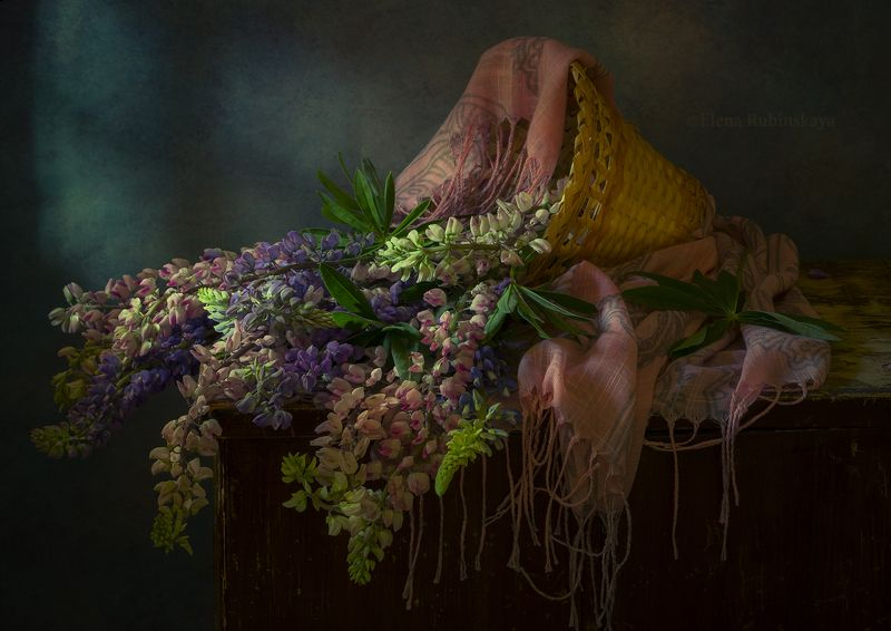 кострома,натюрморт,люпины,цветы,букет,корзина  фото превью