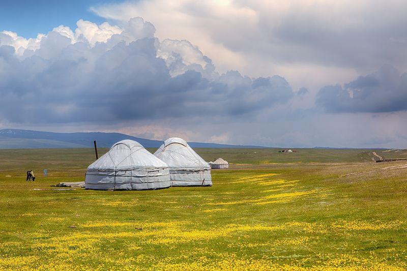 кыргызстан, горы, сон-куль Июнь по-Сон-Кульскиphoto preview