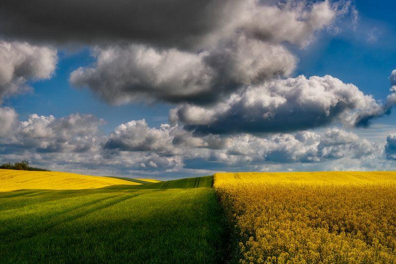 landscape Rural landscapephoto preview