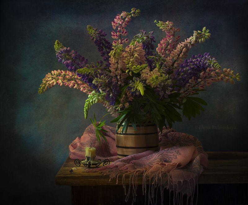 кострома,натюрморт,люпины,цветы,букет  фото превью