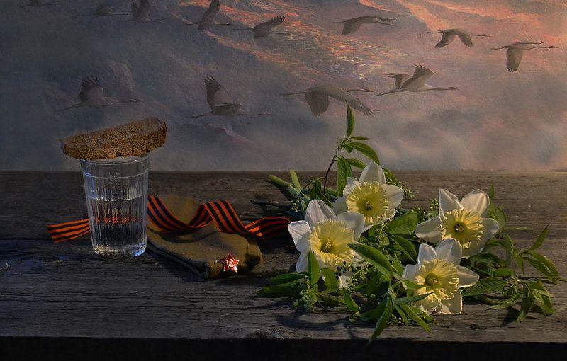 still life,натюрморт,  цветы, фото натюрморт, стихи расула гамзатова, стихи, пилотка, память, орденская лента, 22 июня 1941 года начало великой отечественной войны... день скорби и памяти... ... ещё Мне кажется порою, что солдаты...photo preview