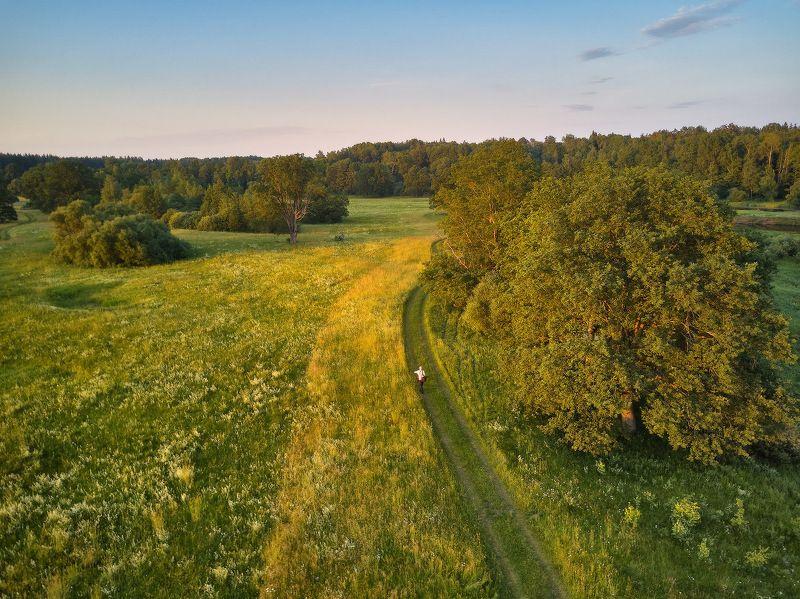 беларусь, вечер, дубрава, июнь, лето, луга, поля, свислочь Вечер на летнем лугеphoto preview