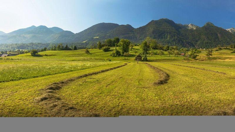 словения, трава, сено, поле, горы, альпы, домик, Предгорья Альп. Жизнь в деревне. Словения.photo preview