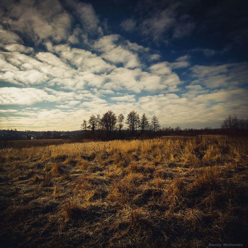 васильков васильків стугна Теплый ноябрьphoto preview