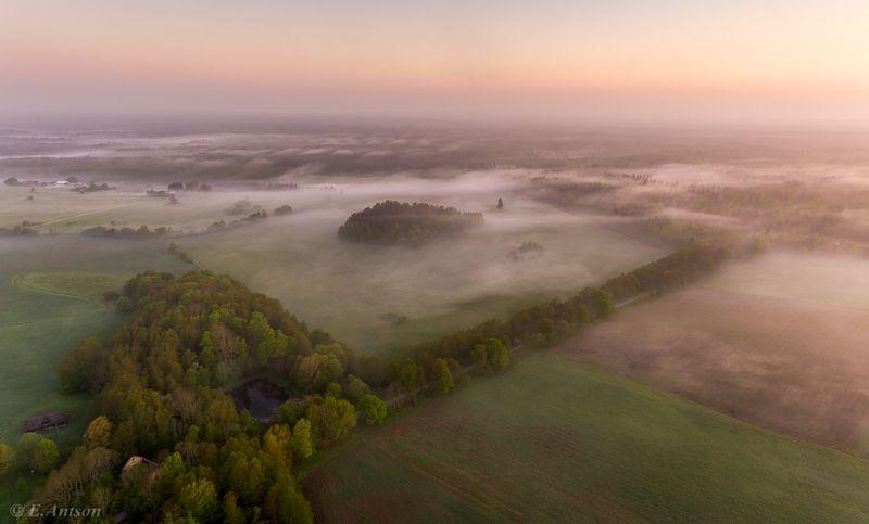 эстония,  пейзаж,  утро,  туман Утро рисовало туман фото превью