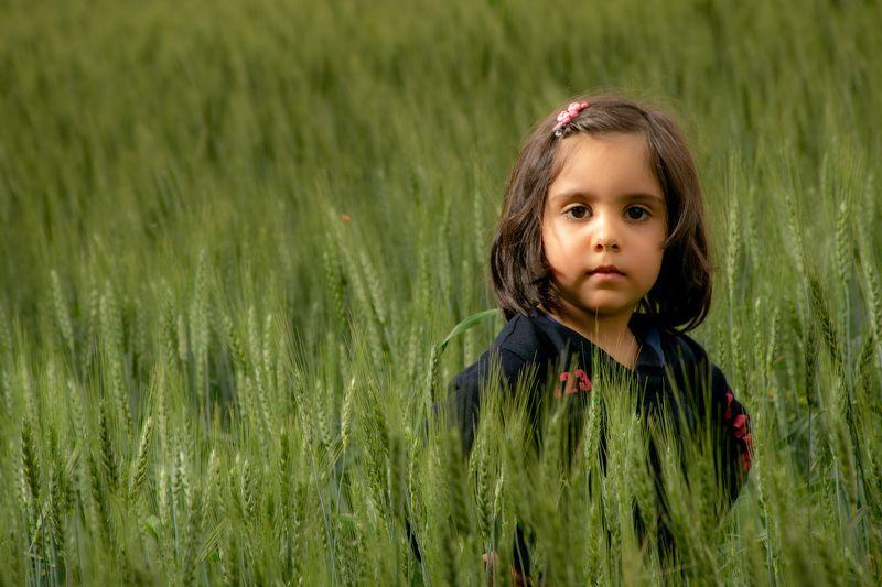 Little Girl in Farmphoto preview