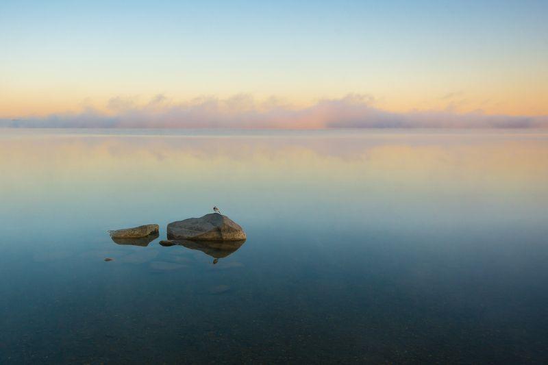 озеро камни урал пейзаж утро птица Утренняя безмятежностьphoto preview