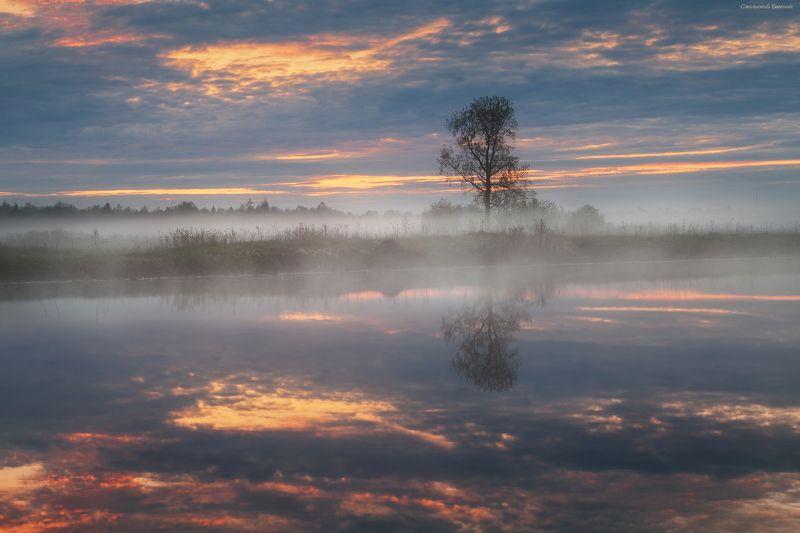 туман, озеро, май, весна, закат, отражение Туманный закатphoto preview